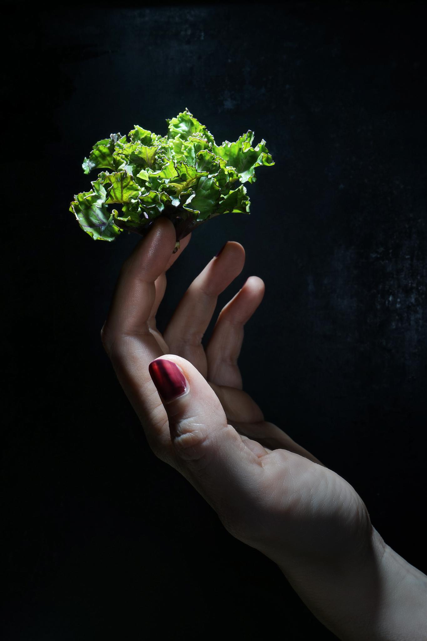 Flower Sprout: Trendgemüse wie gemalt