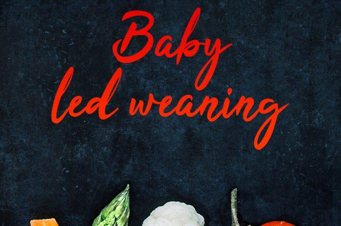 Baby led weaning oder Brei? – Erfahrungen