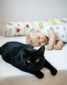 Katze und Baby im Schlafzimmer