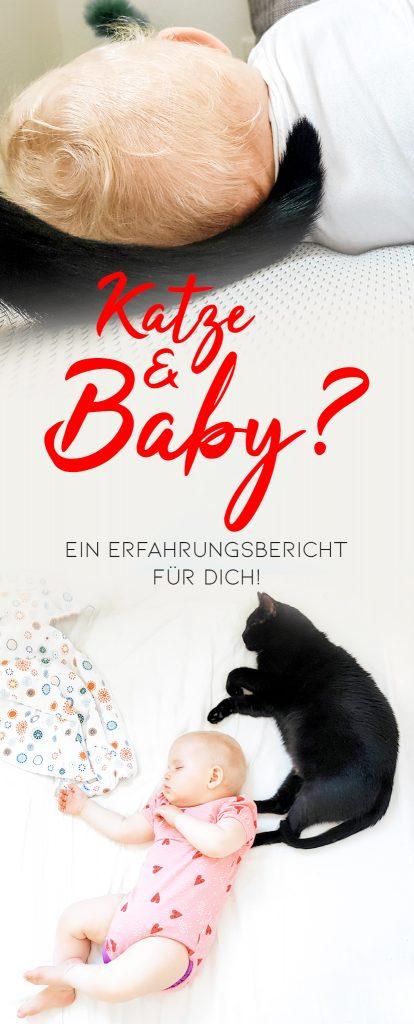Katze und Baby Erfahrungen